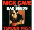 Nick Cave And The Bad Seeds - Tender Prey (DVD 96/24)